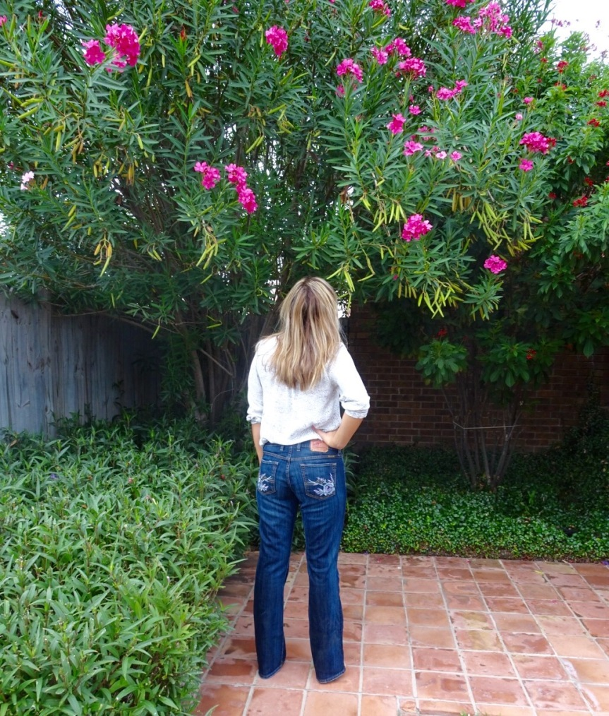 Texas Sultry Embellished Jean